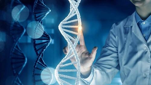 DỊCH VỤ XÉT NGHIỆM ADN TẠI KON TUM UY TÍN CHÍNH XÁC