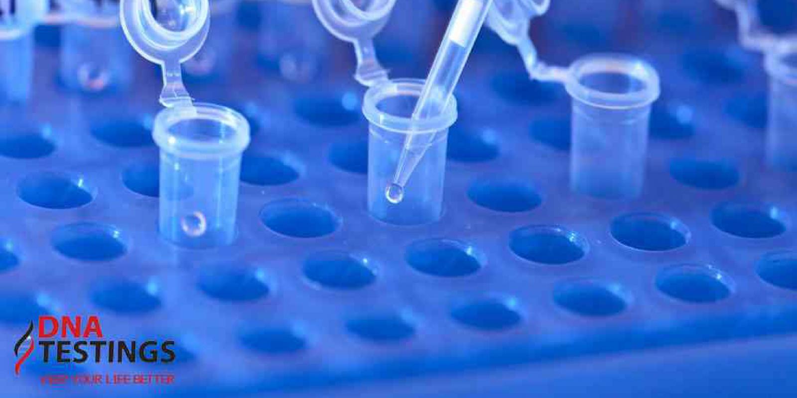 thu mẫu xét nghiệm ADN miễn phí tại nhà