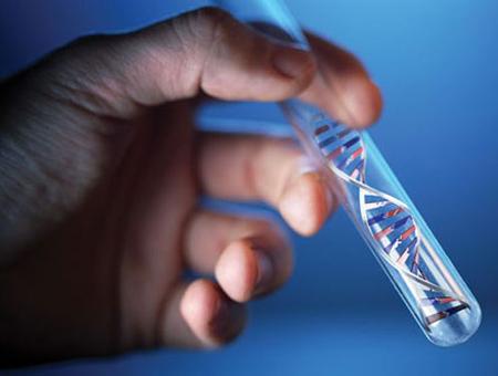 DỊCH VỤ XÉT NGHIỆM ADN Ở QUẬN 3