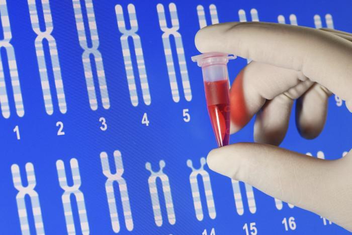 Xét nghiệm ADN cần gì để đảm bảo tính chính xác?