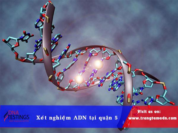 xet-nghiem-adn-quan-5