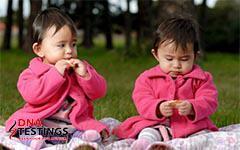 Giám định ADN - Ông bố Hòa Bình sốc khi chỉ một trong hai bé sinh đôi là con mình