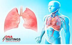 Không chỉ hút thuốc lá, làm việc này không cẩn thận cũng tàn phá phổi của bạn